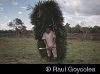 ®Raul Goycolea
