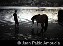 ®Juan Pablo Ampudia