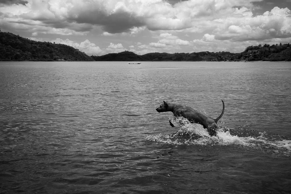 Stegmann-Oliver-Bahia-2015-24
