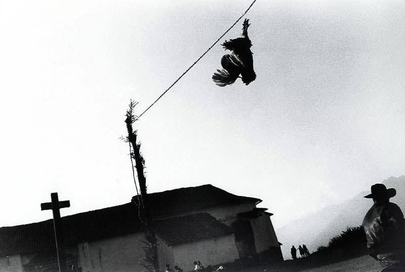 giorgio_negro_03
