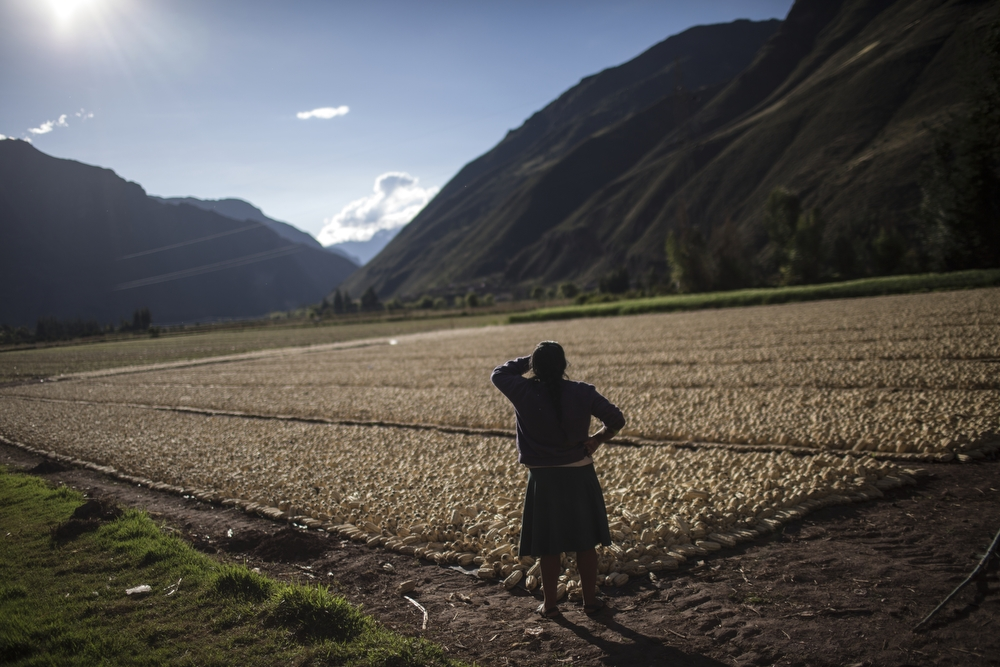 Daily life in the Sacred Valley, near Pisa in the Cusco region, Peru, on Saturday, May 23, 2015