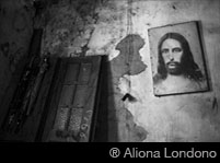 ® Aliona Londono