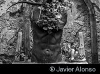 ® Javier Alonso