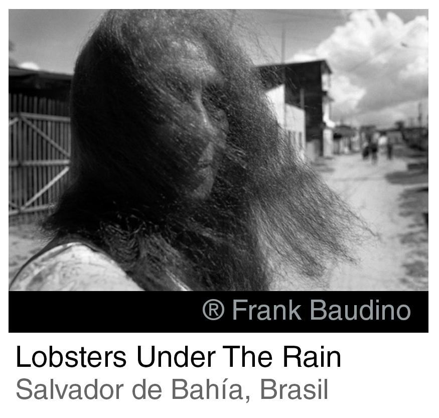 Lobster under the rain INTRO SPA