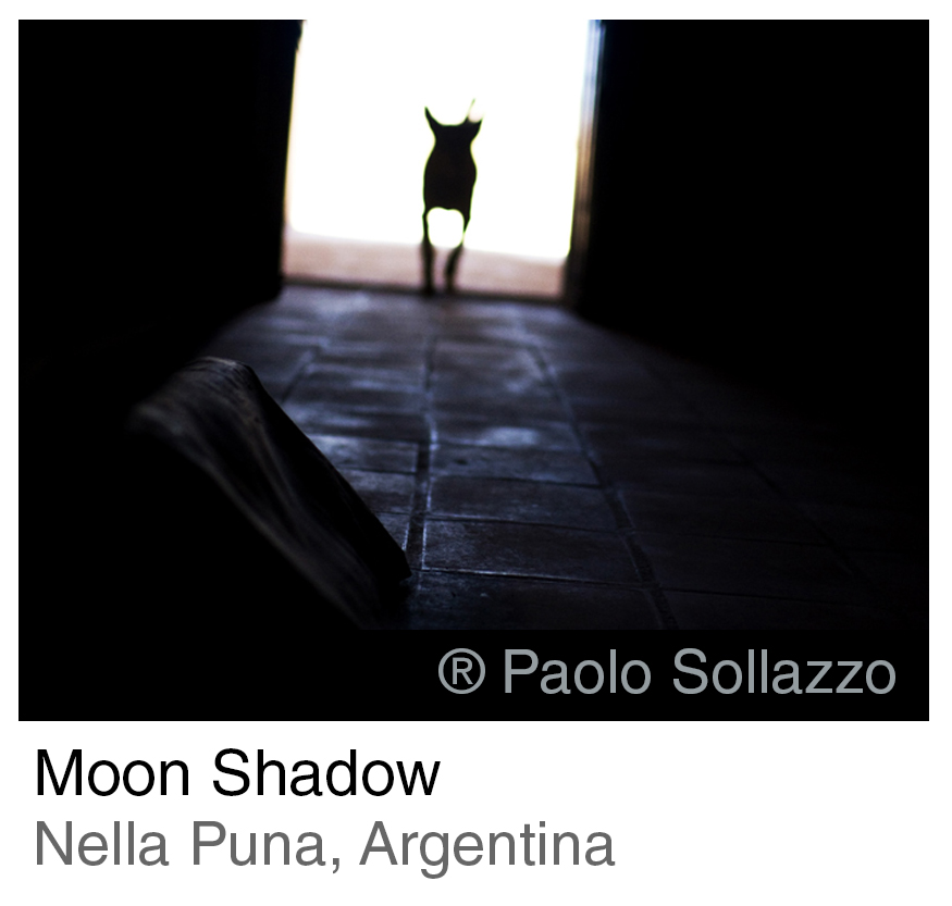 INTRO Moon Shadow