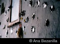 ® Ana Bezanilla