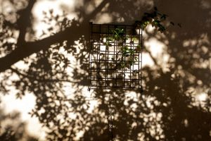 giampiero_fiori_08.jpg