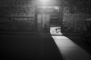 01_Leonardo_Carrato.jpg